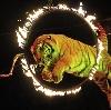 Цирки в Ташле